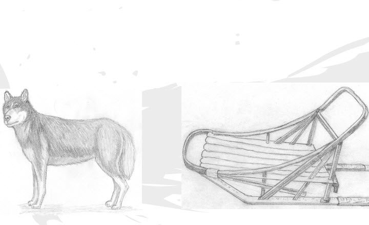 Arctic Rush: Game Development in Unity